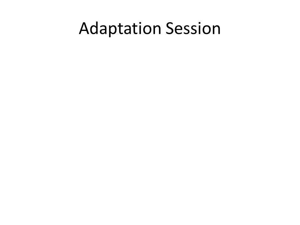 Adaptation Session