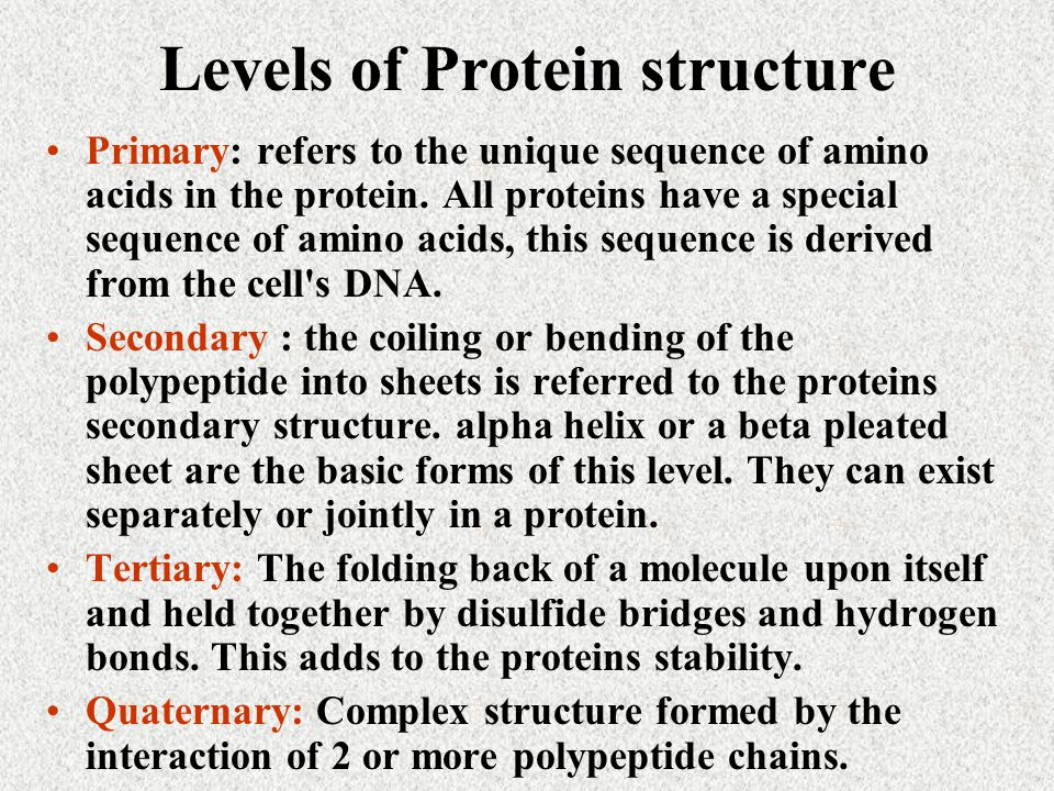 Levels of Protein structure Primary: refers to the unique sequence of amino acids in the protein.