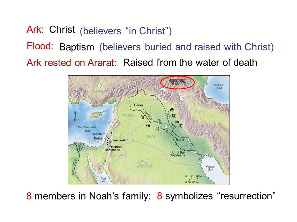 Ark: Flood: Ark rested on Ararat: 8 members in Noah's family: Christ Baptism Raised from the water of death (believers in Christ ) (believers buried and raised with Christ) 8 symbolizes resurrection