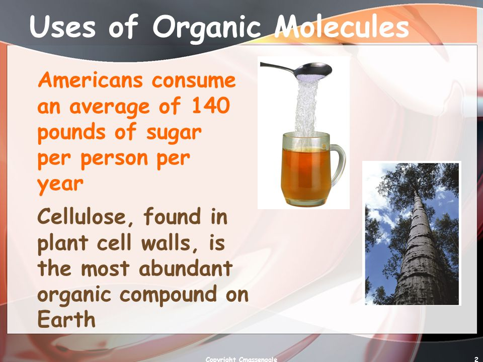 2 Uses of Organic Molecules Americans consume an average of 140 pounds of sugar per person per year Cellulose, found in plant cell walls, is the most abundant organic compound on Earth Copyright Cmassengale