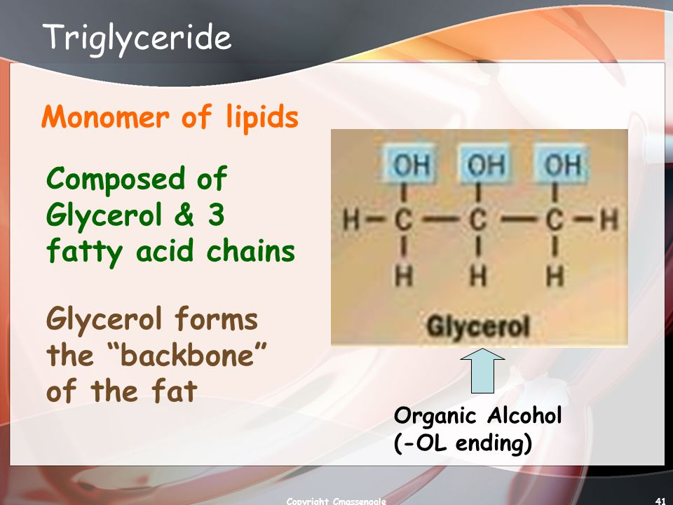 41 Triglyceride Monomer of lipids Composed of Glycerol & 3 fatty acid chains Glycerol forms the backbone of the fat Organic Alcohol (-OL ending) Copyright Cmassengale