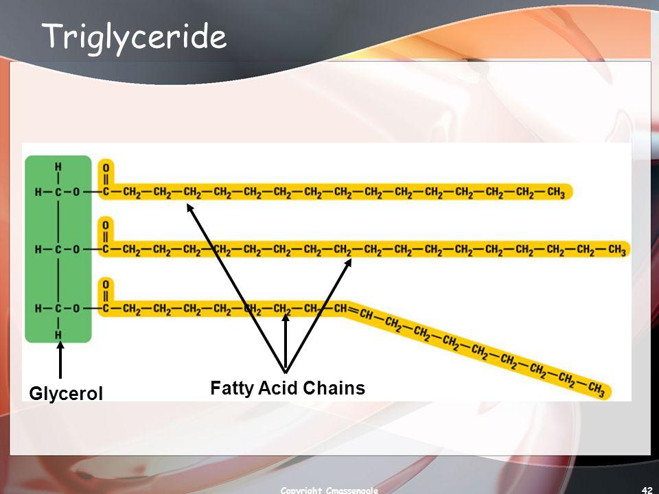 42 Triglyceride Glycerol Fatty Acid Chains Copyright Cmassengale