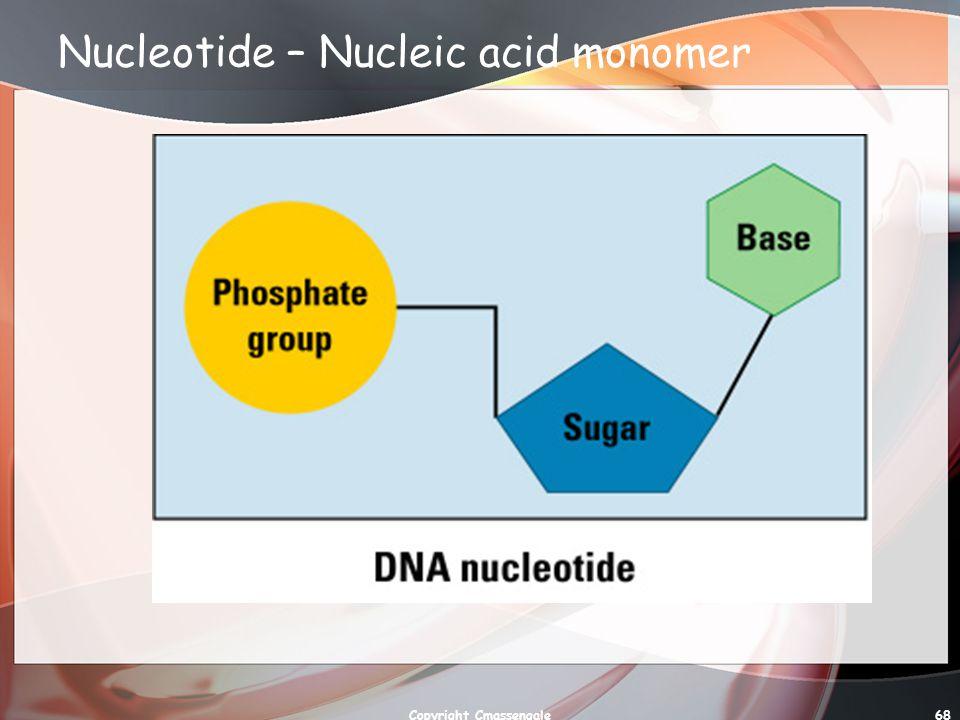 68 Nucleotide – Nucleic acid monomer Copyright Cmassengale
