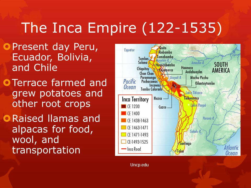 The Inca Empire (122-1535)  Present day Peru, Ecuador, Bolivia, and Chile  Terrace farmed and grew potatoes and other root crops  Raised llamas and