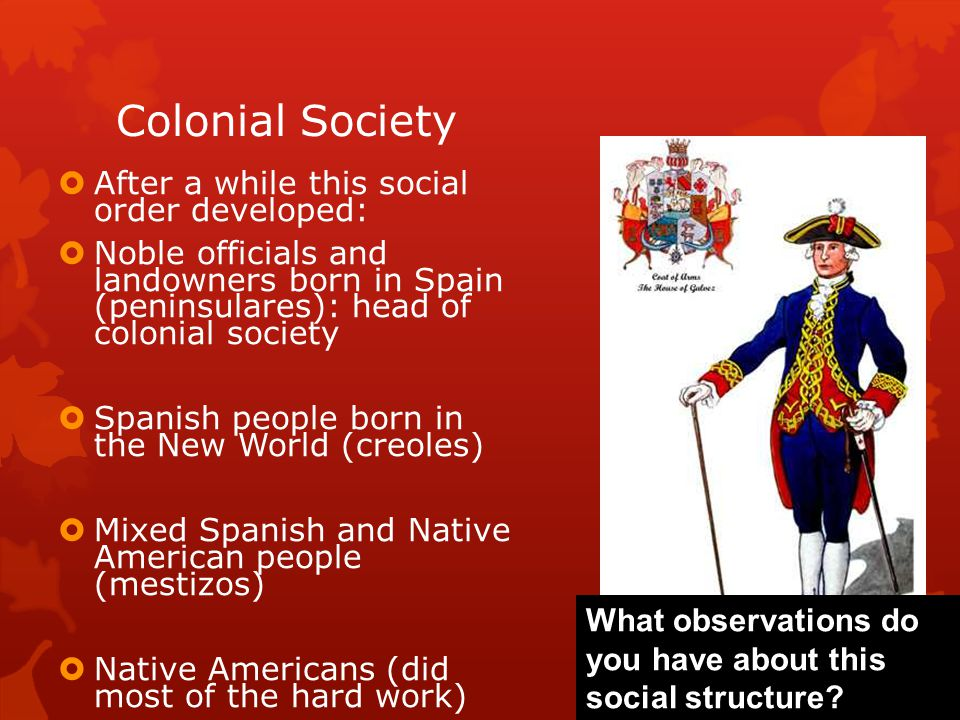 Colonial Society  After a while this social order developed:  Noble officials and landowners born in Spain (peninsulares): head of colonial society