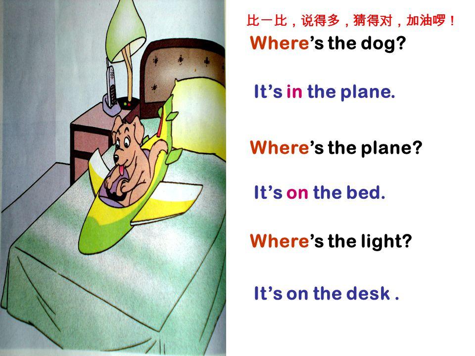 Where's the dog.It's in the plane. It's on the bed.