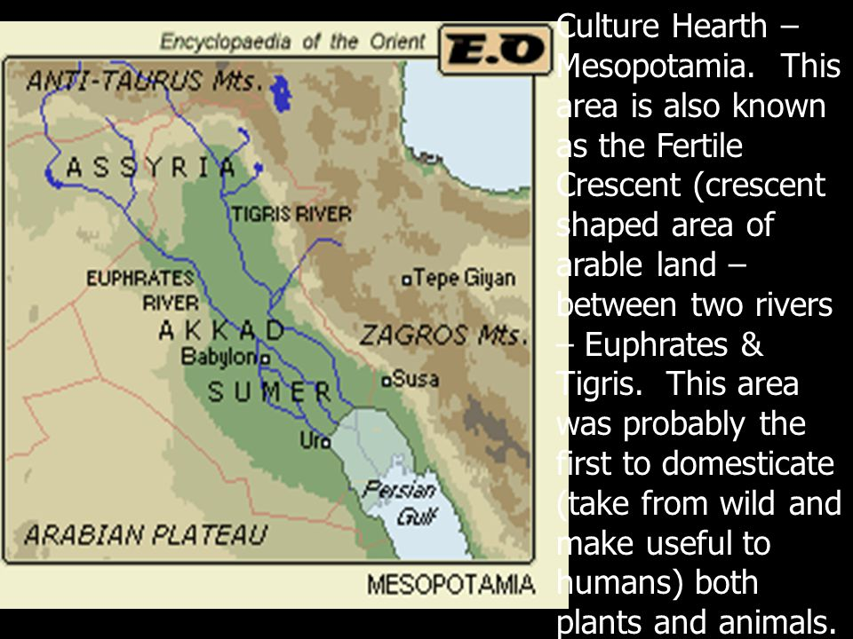 Mesopotamia is a region, not a country.