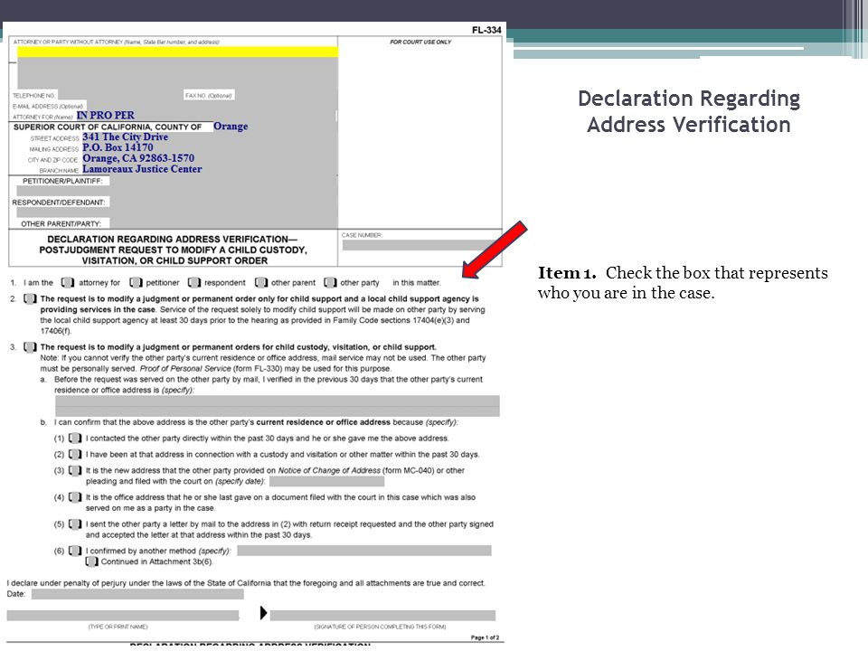 Declaration Regarding Address Verification Item 1. Check the box that represents who you are in the case.