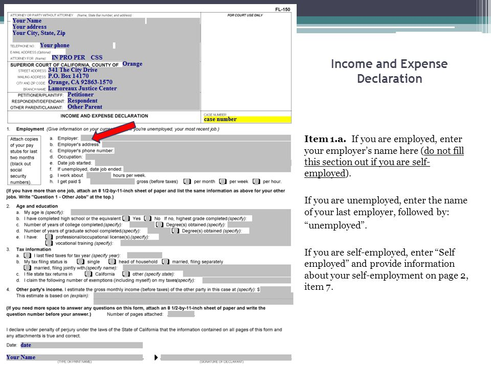 Income and Expense Declaration Item 1.a. If you are employed, enter your employer's name here (do not fill this section out if you are self- employed)