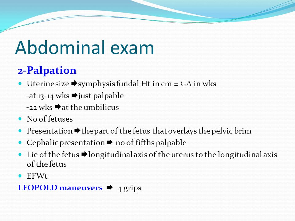 Abdominal exam 2-Palpation Uterine size  symphysis fundal Ht in cm = GA in wks -at 13-14 wks  just palpable -22 wks  at the umbilicus No of fetuses