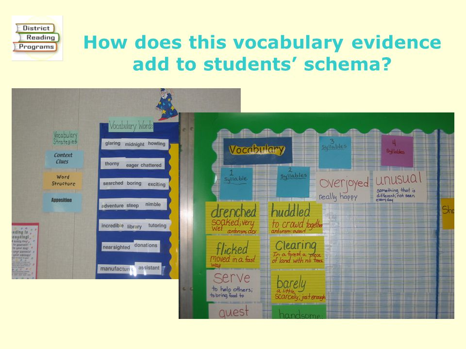How does this vocabulary evidence add to students' schema