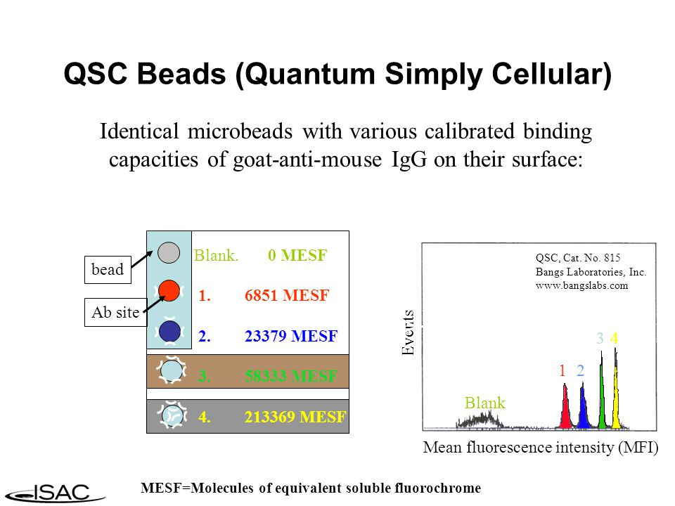 Identical microbeads with various calibrated binding capacities of goat-anti-mouse IgG on their surface: Events Mean fluorescence intensity (MFI) 12 34 Blank QSC, Cat.