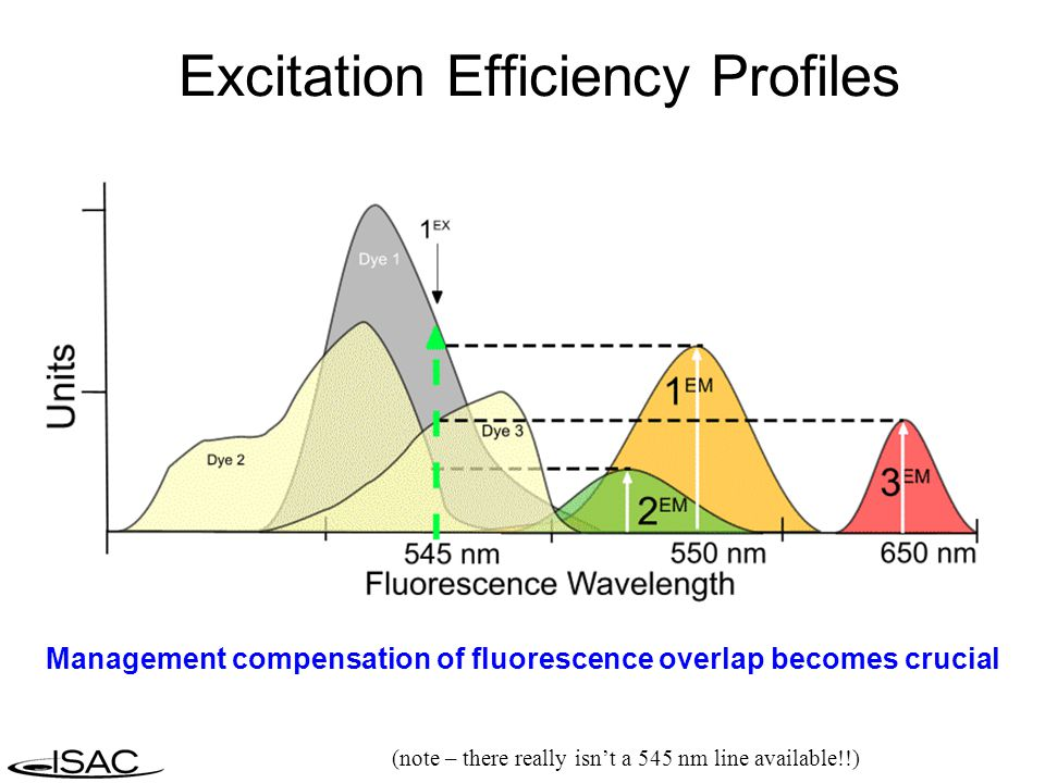 Excitation Efficiency Profiles (note – there really isn't a 545 nm line available!!) Management compensation of fluorescence overlap becomes crucial