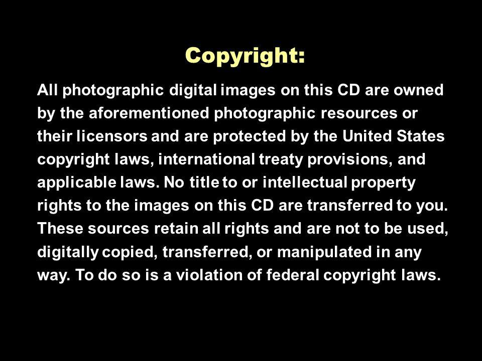 Artville LLC #015, 016, 007, 027, 018, 020, 016, 028, 029, 030, 038, 042, 044, 046, ©2004 Liquid Library. All rights reserved US/Canada/International