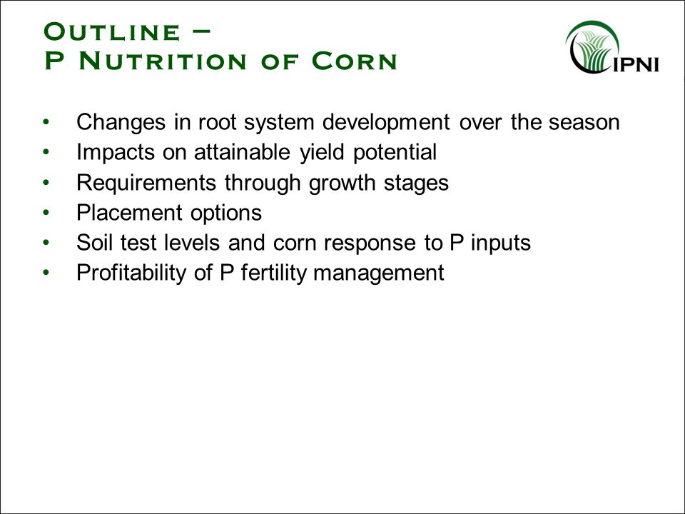 Summary - P Nutrition of Corn Roots must grow to where the P is, since P is nearly immobile in most soils Seedlings provided with high P develop higher attainable yield potential Uptake of P continues through the season Placement near the seedling often boosts yield.