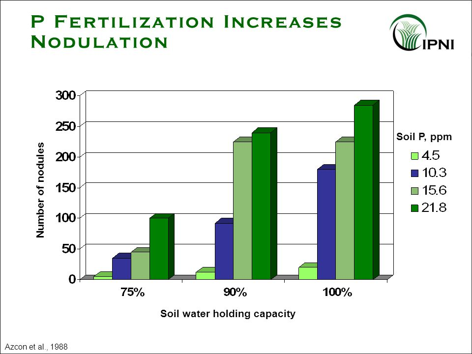 P Fertilization Increases Nodulation Azcon et al., 1988 Soil P, ppm Number of nodules Soil water holding capacity