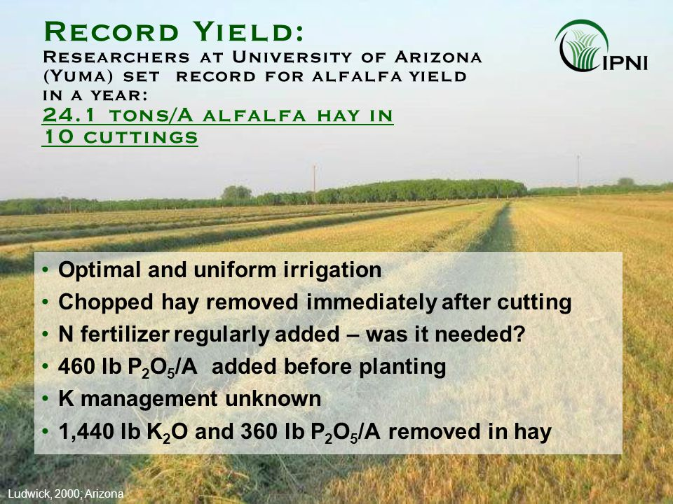 Alfalfa Nutrient Uptake and Removal Alfalfa has higher demand for nutrients than most crops Nutrient Amount Removed lb/ton P2O5P2O5 15 K2OK2O60 Ca30 Mg6 S6 N (through fixation)60