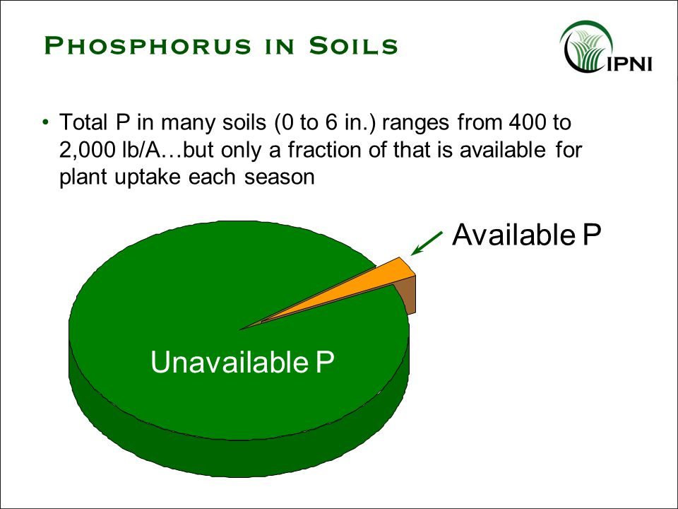 Available P Unavailable P Phosphorus in Soils Total P in many soils (0 to 6 in.) ranges from 400 to 2,000 lb/A…but only a fraction of that is available for plant uptake each season
