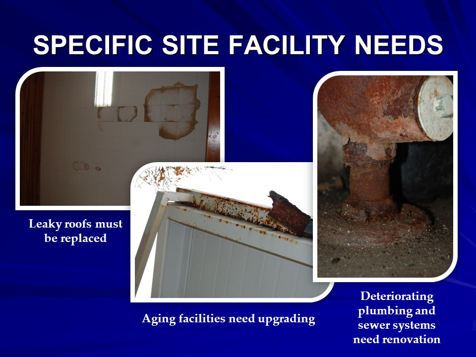 SPECIFIC SITE FACILITY NEEDS Electrical systems must be upgraded Windows need to be replaced Energy efficiency should be improved