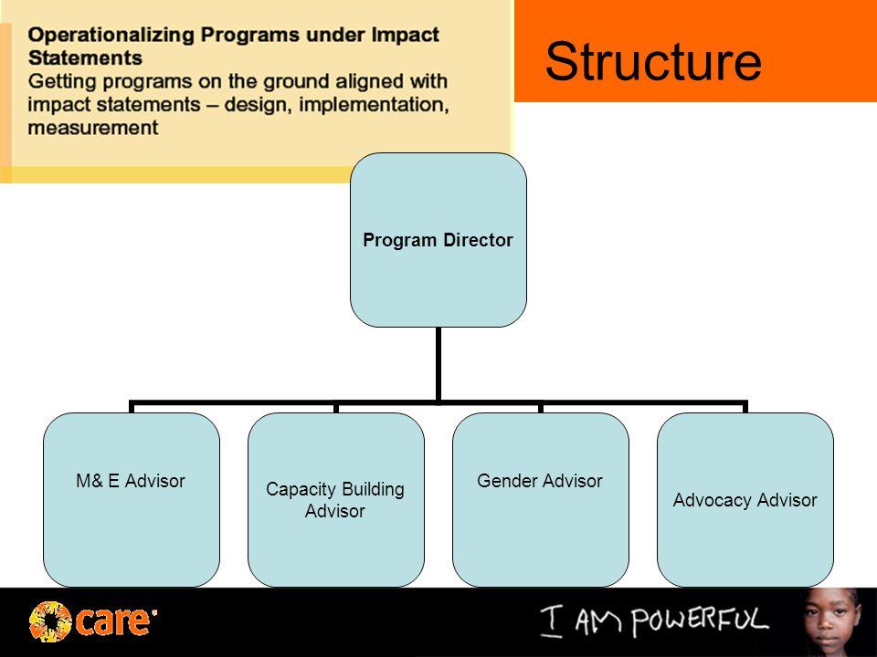 Structure Program Director M& E AdvisorCapacity Building Advisor Gender AdvisorAdvocacy Advisor