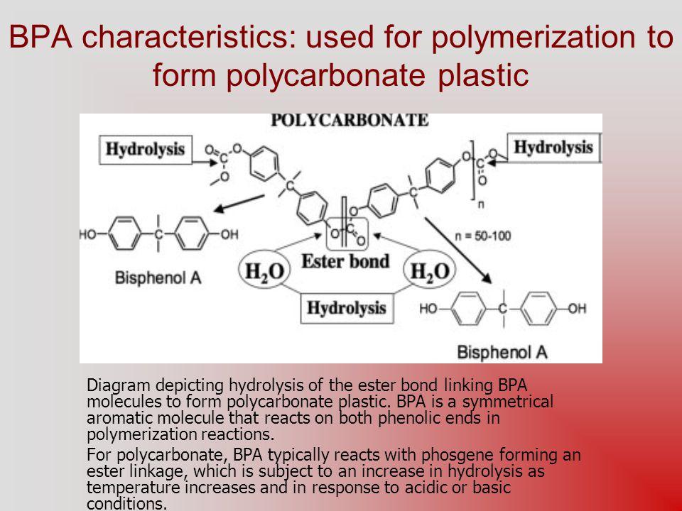 1.Volkel W et al; Chem Res Toxicol 15 (10): 1281-7 (2002) 2.Morrissey RE et al; Fund Appl Toxicol 8 (4): 571-82 (1987) 3.Shin BS et al; J Toxicol Environ Health A 65 (5-6): 395-406 (2002) 4.Yoo SD et al; J Toxicol Environ Health A 64 (5): 417-26 (2001) 5.Mu X et al; Environ Toxicol Chem 24 (1): 146-52 (2005) 6.Razzoli M et al; Brain Res Bull 65 (3): 249-54 (2004) 7.Sugiura-Ogasawara M et al; Hum Reprod 20 (8): 2325-9 (2005) 8.National Toxicology Program, U.S.