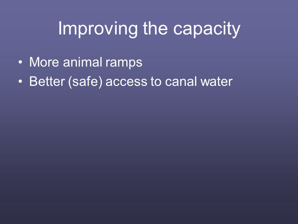 Improving the capacity More animal ramps Better (safe) access to canal water