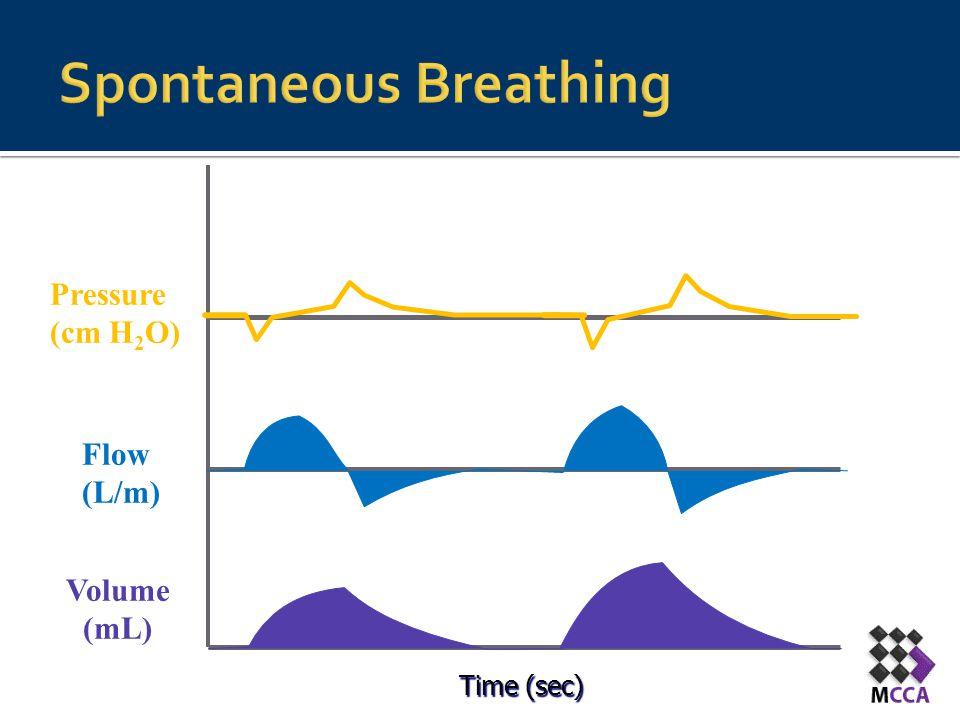 Time (sec) Flow (L/m) Pressure (cm H 2 O) Volume (mL)