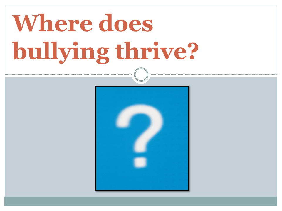 Where does bullying thrive