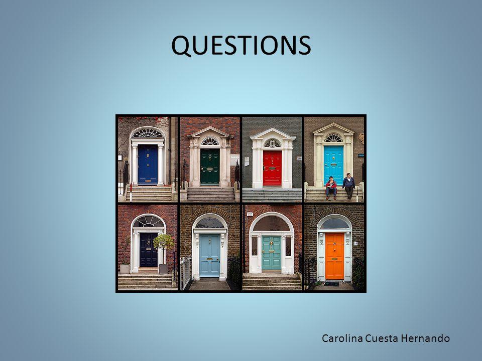 QUESTIONS Carolina Cuesta Hernando