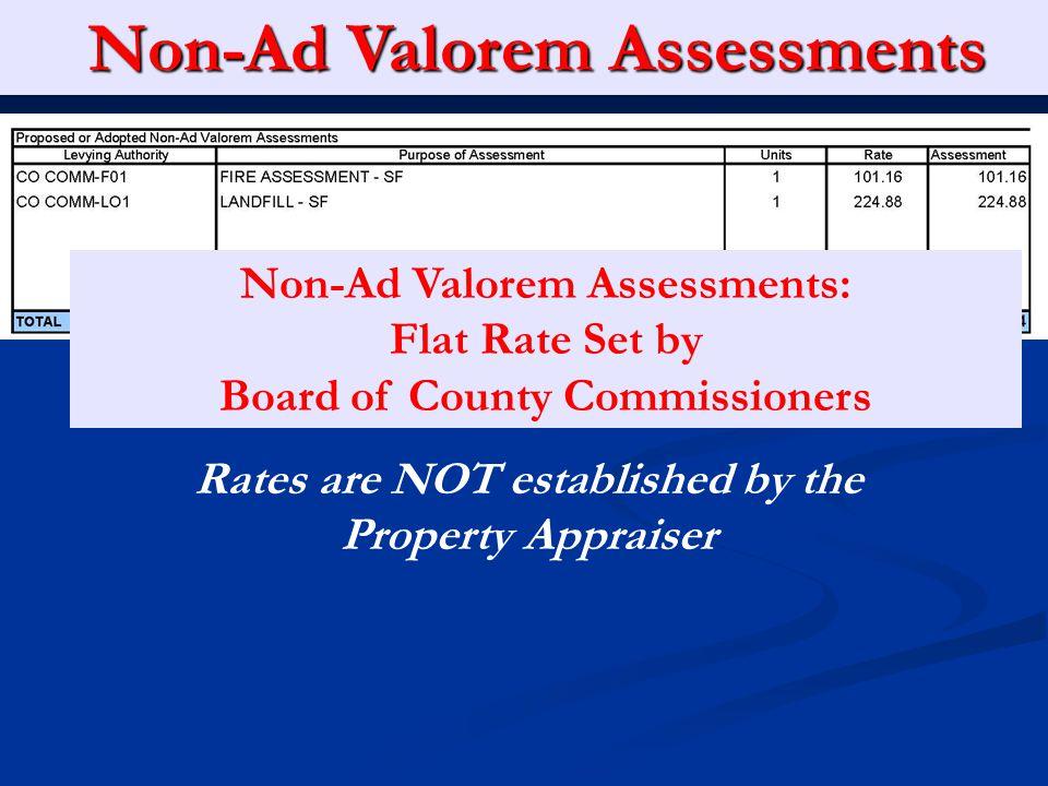 Non-Ad Valorem Assessments