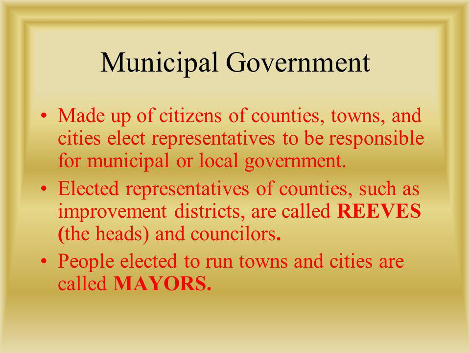 Municipal Government Made up of citizens of counties, towns, and cities elect representatives to be responsible for municipal or local government. Ele