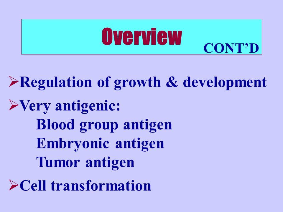  Regulation of growth & development  Very antigenic: Blood group antigen Embryonic antigen Tumor antigen  Cell transformation Overview CONT'D