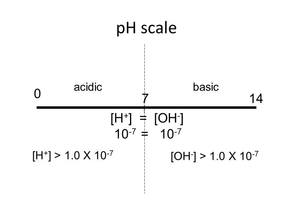 pH scale 0 147 [H + ] = [OH - ] 10 -7 = 10 -7 [H + ] > 1.0 X 10 -7 [OH - ] > 1.0 X 10 -7 acidicbasic