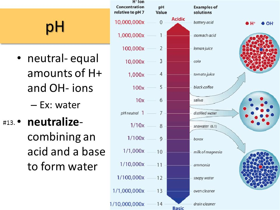pHpH neutral- equal amounts of H+ and OH- ions – Ex: water neutralize- combining an acid and a base to form water #13.
