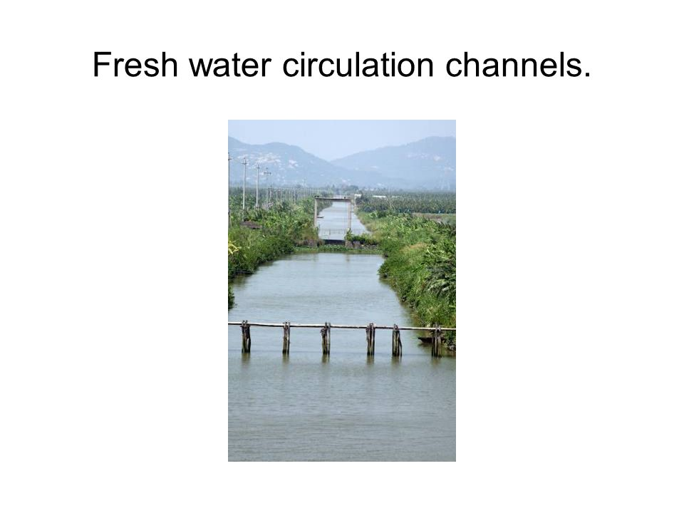 Fresh water circulation channels.