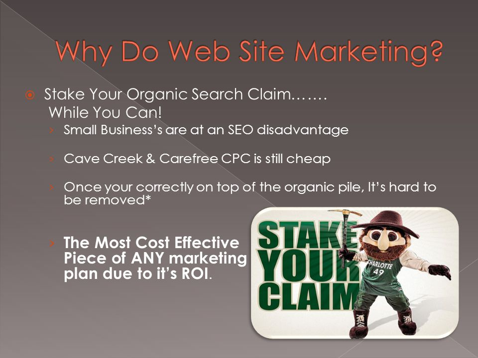  Stake Your Organic Search Claim……. While You Can.