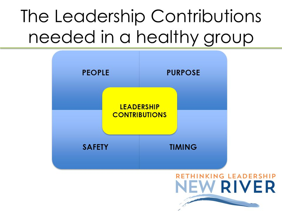 The Leadership Contributions needed in a healthy group