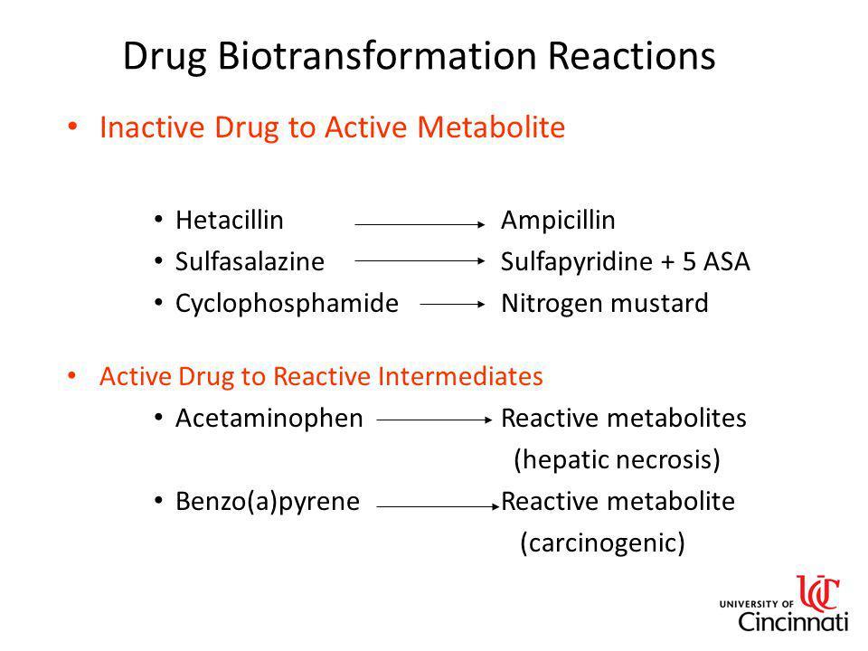Drug Biotransformation Reactions Inactive Drug to Active Metabolite HetacillinAmpicillin Sulfasalazine Sulfapyridine + 5 ASA CyclophosphamideNitrogen