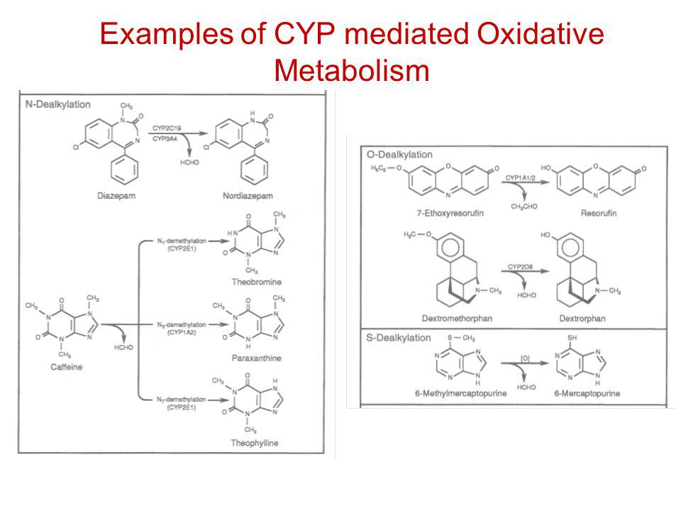 Examples of reactions catalyzed by cytochrome P450: Heteroatom dealkylation Examples of CYP mediated Oxidative Metabolism