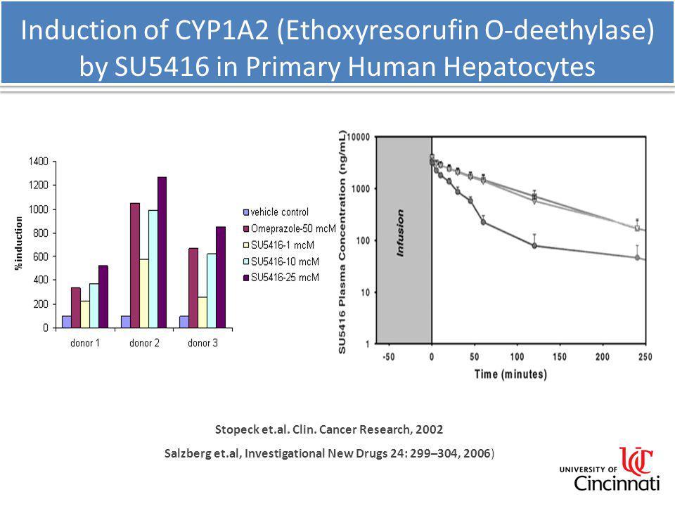 Induction of CYP1A2 (Ethoxyresorufin O-deethylase) by SU5416 in Primary Human Hepatocytes Stopeck et.al. Clin. Cancer Research, 2002 Salzberg et.al, I