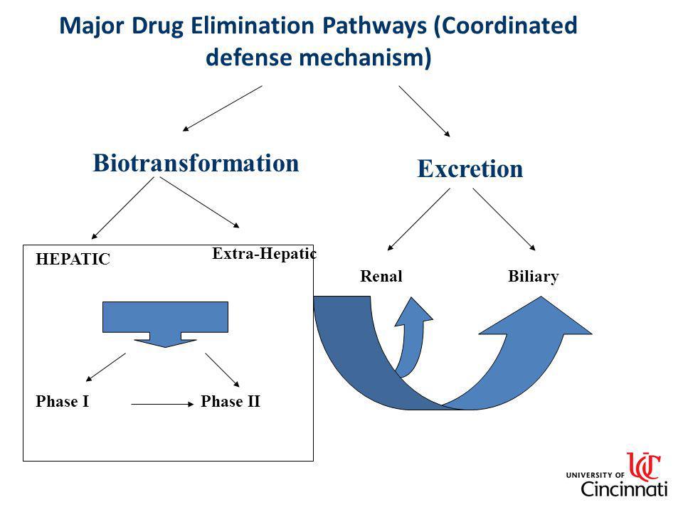 Major Drug Elimination Pathways (Coordinated defense mechanism) RenalBiliary Biotransformation Excretion HEPATIC Extra-Hepatic Phase IPhase II