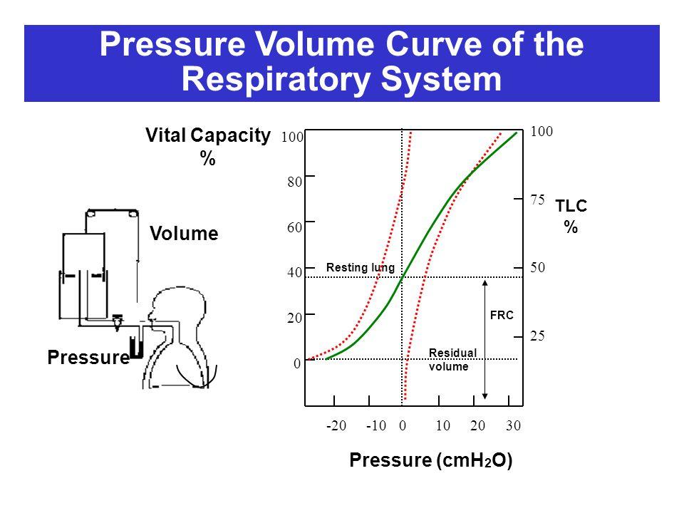 Pressure Volume Vital Capacity % TLC % Pressure (cmH 2 O) 100 75 50 25 100 0 20 40 60 80 0-20102030-10 Resting lung FRC Residual volume Pressure Volum