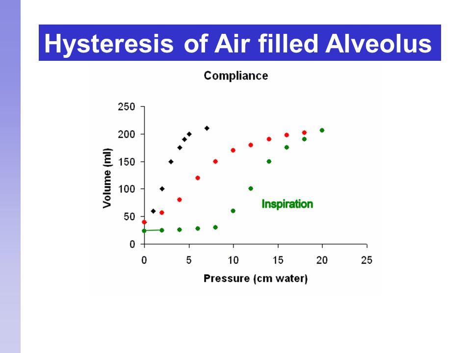 Hysteresis of Air filled Alveolus