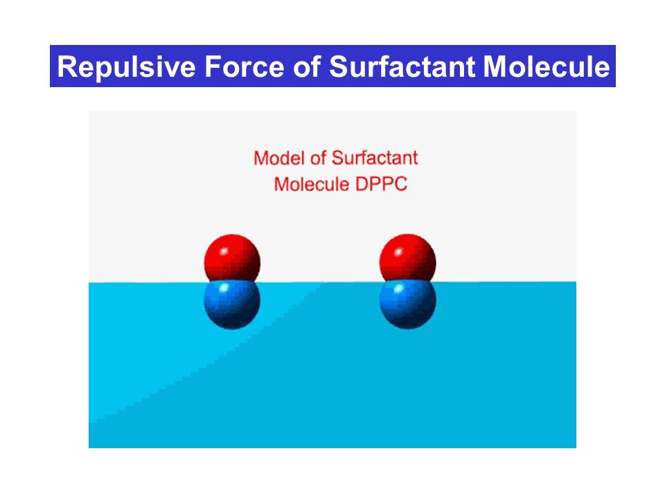 Repulsive Force of Surfactant Molecule