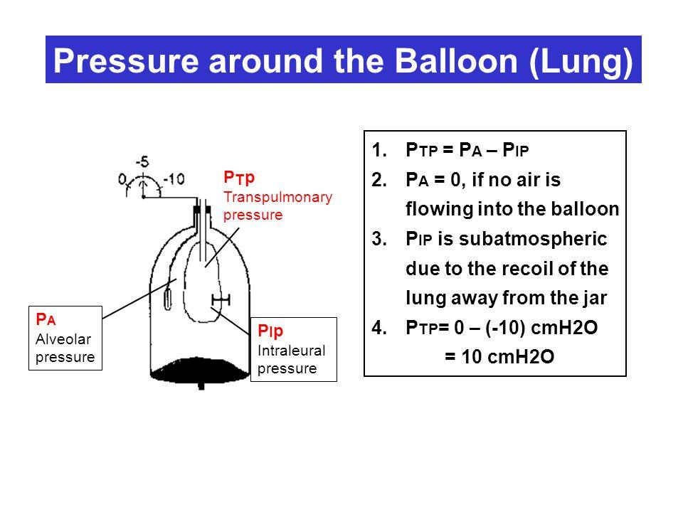 P A Alveolar pressure P I p Intraleural pressure P T p Transpulmonary pressure Pressure around the Balloon (Lung) 1.P TP = P A – P IP 2.P A = 0, if no