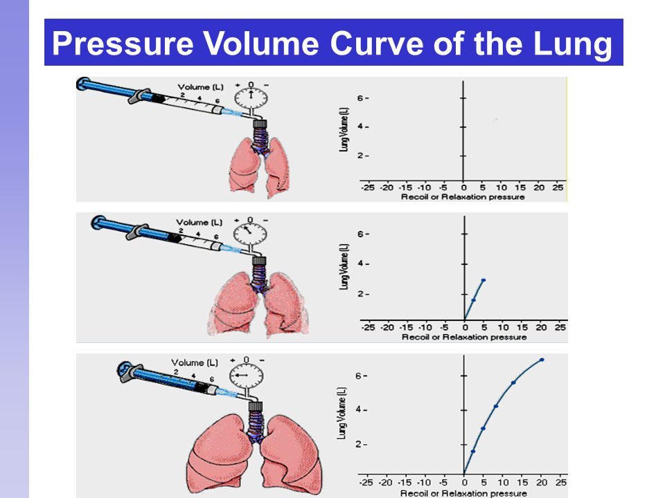 Pressure Volume Curve of the Lung