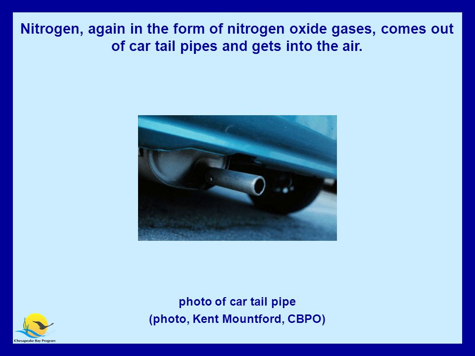Automobile Exhaust photo of car tail pipe (photo, Kent Mountford, CBPO) Nitrogen, again in the form of nitrogen oxide gases, comes out of car tail pipes and gets into the air.