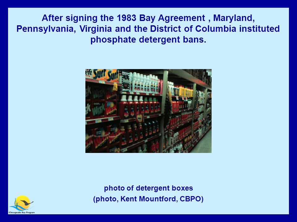 Phosphate Detergent Ban photo of detergent boxes (photo, Kent Mountford, CBPO) After signing the 1983 Bay Agreement, Maryland, Pennsylvania, Virginia and the District of Columbia instituted phosphate detergent bans.