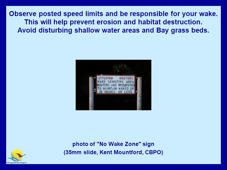 Avoid disturbing shallow water areas and Bay grass beds photo of No Wake Zone sign (35mm slide, Kent Mountford, CBPO) Observe posted speed limits and be responsible for your wake.
