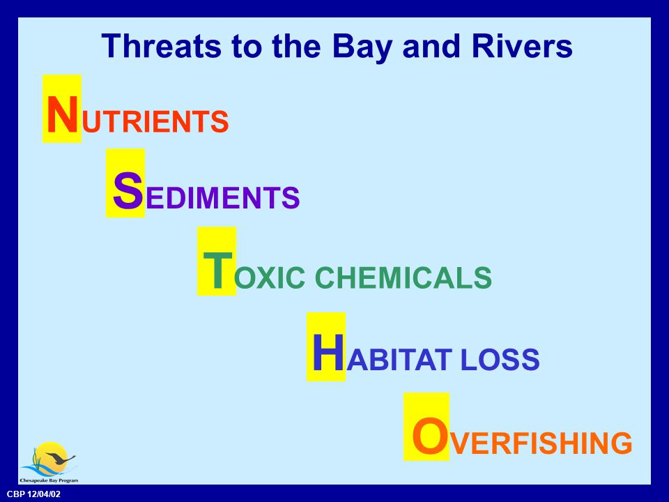 CBP 12/04/02 Nutrients N itrogen P hosphorus and Are the nutrients causing problems in the Bay.